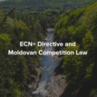 ECN+ Directive and Moldovan Competition Law